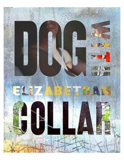 Book Review: Dog With Elizabethan Collar by Ken Taylor